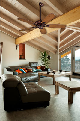 The best fan choice for your room angled ceilings aloadofball Images