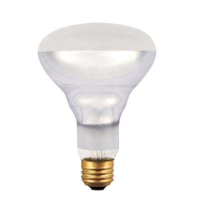 65 Watt BR30 Incandescent Flood Light Bulb
