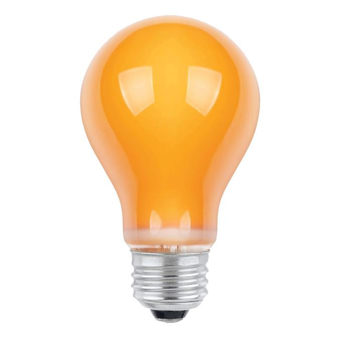 Westinghouse A19 25 Watt Medium Base Orange Incandescent Lamp