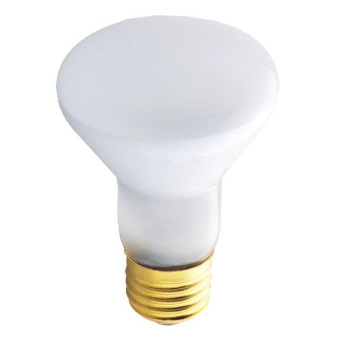 30 watt r20 flood light bulb