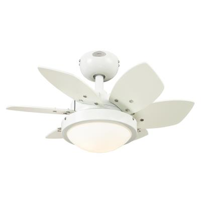 Quince 24-Inch Indoor Ceiling Fan with Dimmable LED Light Fixture